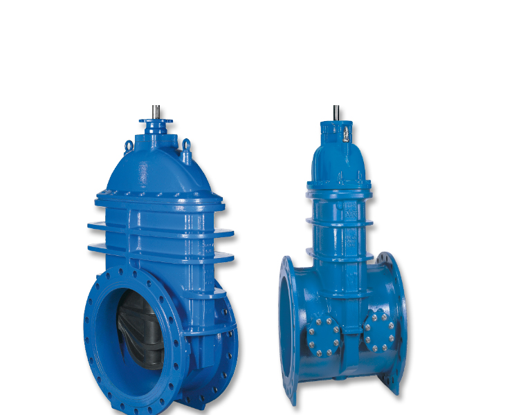 Water transmission gate valves